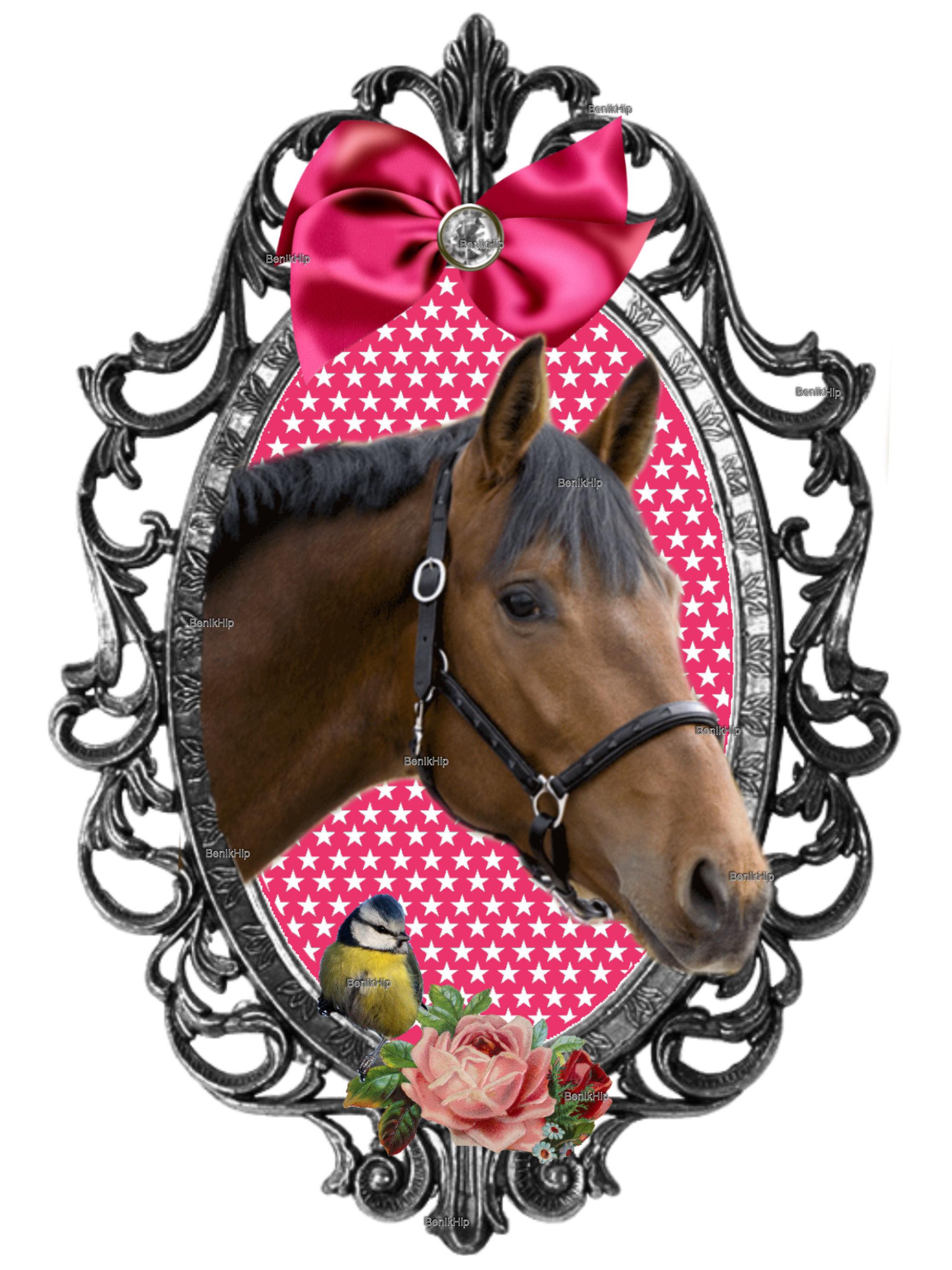 Schoudertas Met Paard : Strijkapplicatie full color paarden applicatie met sterren