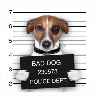 Strijkapplicatie Bad Dog
